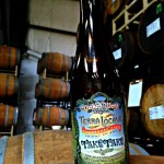 Wicked Weed Terra Locale Take Take