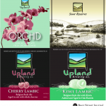 Upland June Sour Lottery