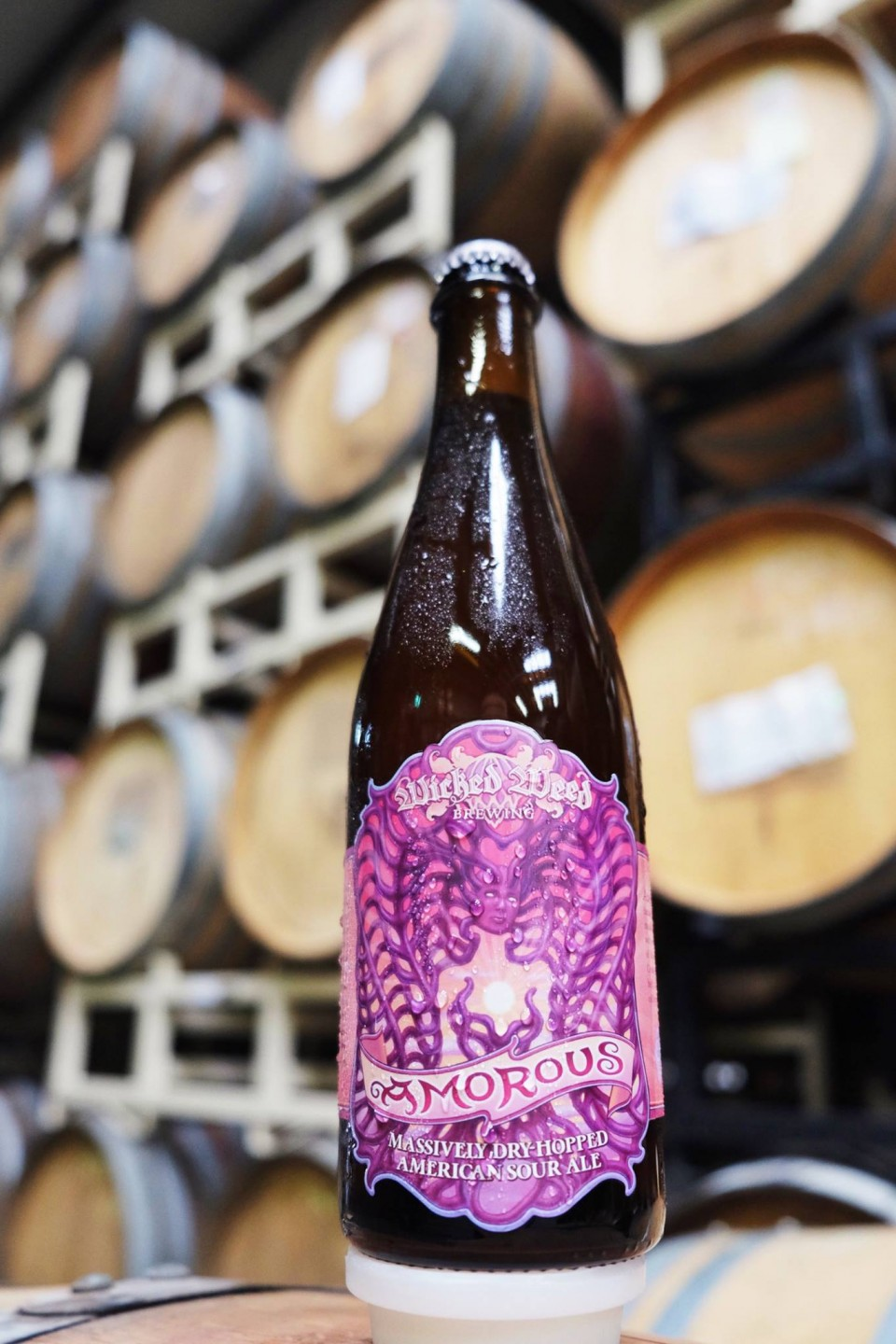 Wicked Weed Amorous