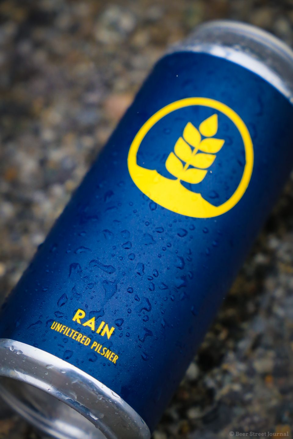 Pure Brewing Rain Unfiltered Pilsner