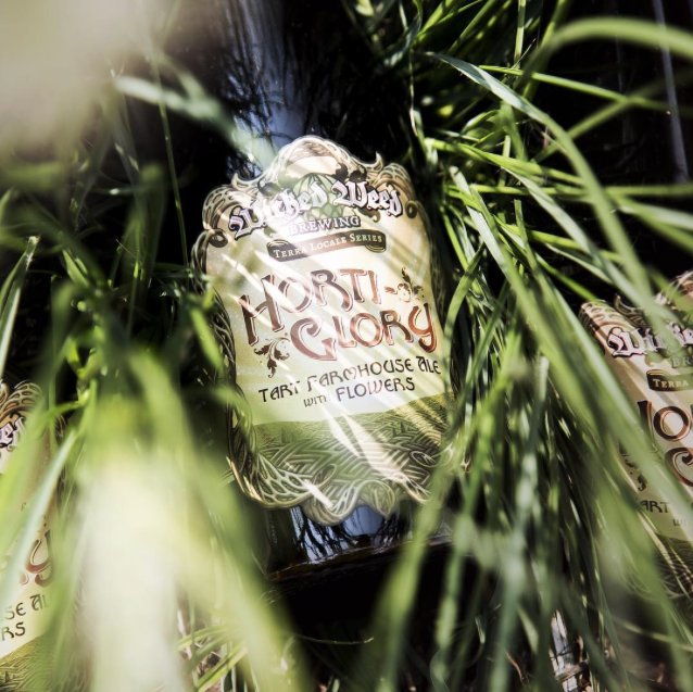 Wicked Weed Horti-Glory